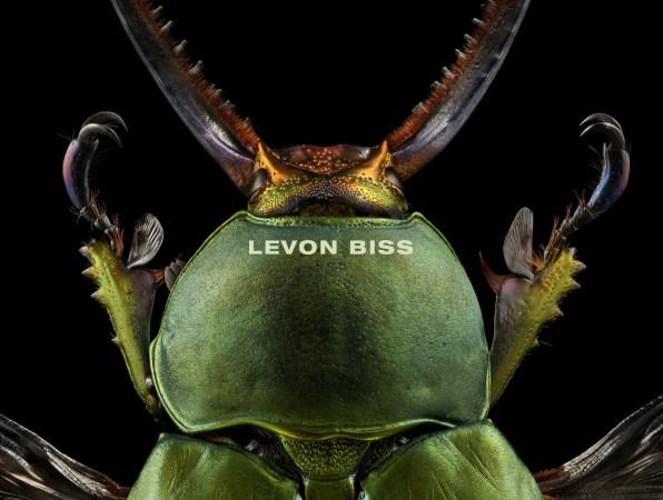 Levon Biss